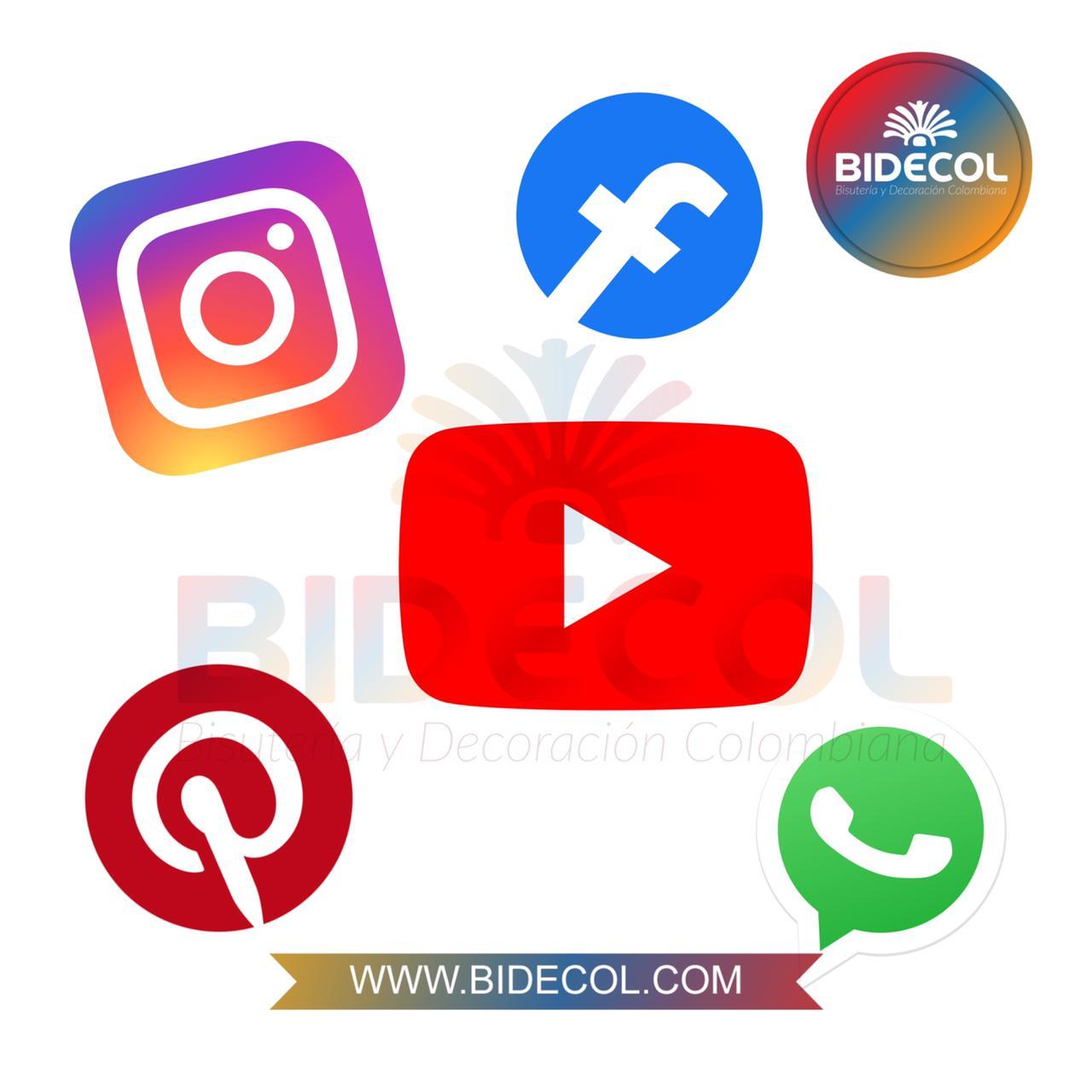 Redes Sociales Bidecol